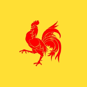 wallonia_flags